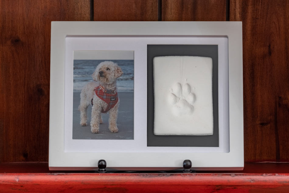 Framed paw print impression sitting on shelf