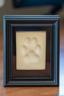 Paw print impression framed on desk