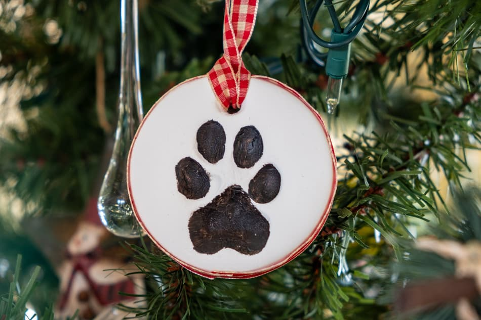 Dog paw print ornament on Christmas tree